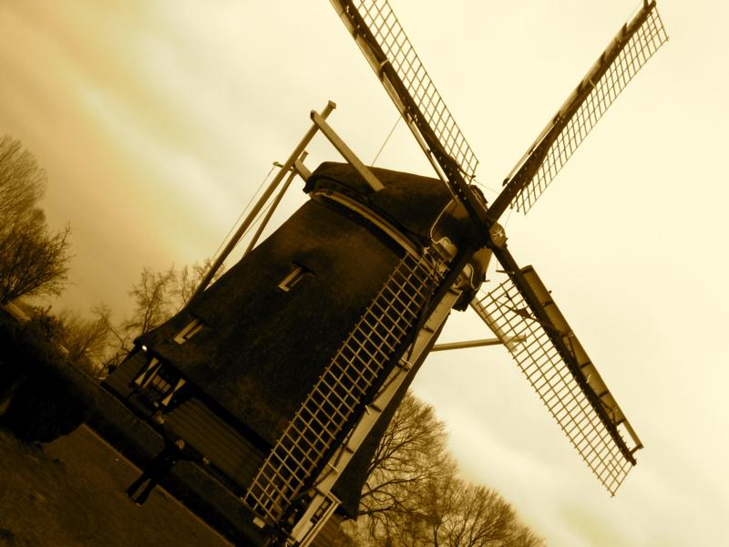 jill-wind